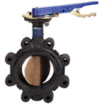 Cast Iron Butterfly Valves,200 PSI,EPDM Seat Liner